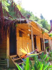 De Native Guesthouse Tanah Rata (5)