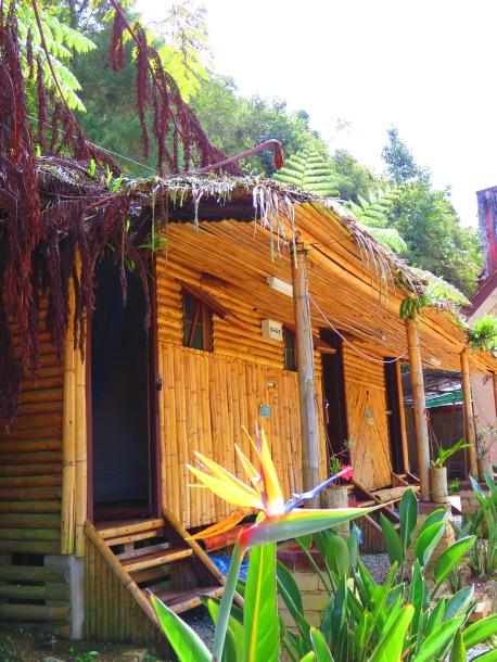 De Native Guesthouse Tanah Rata (5)